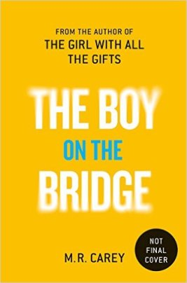 boy-on-bridge-carey